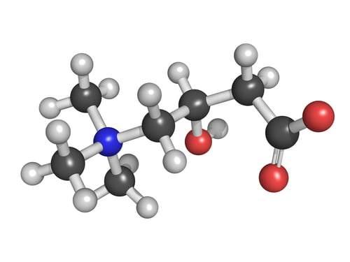 L-Carnitine Furmarate